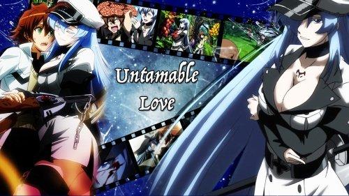 Untamable Love